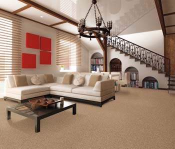 Carpet Flooring Hillsboro